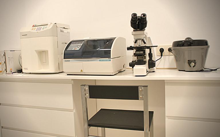 clinica_veterinaria_argos_instalaciones_muros_laboratorio