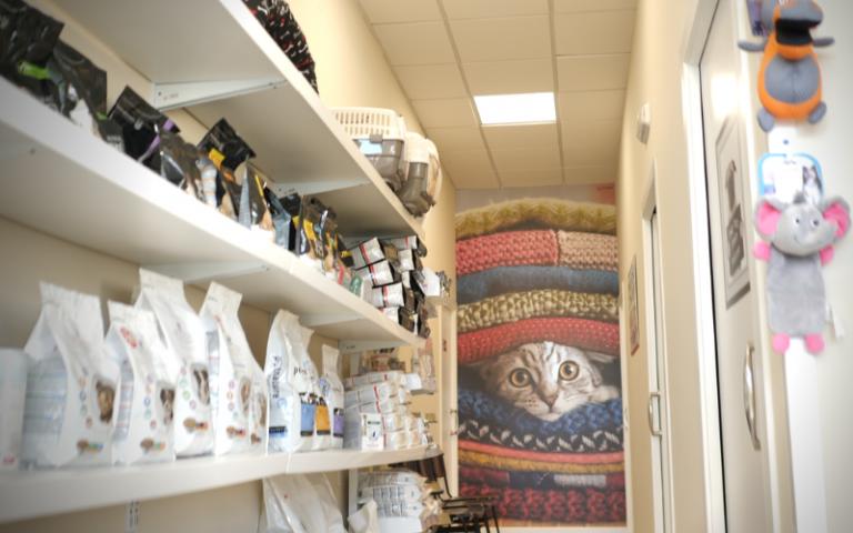 clinica_veterinaria_argos_instalaciones_muros_pasillo